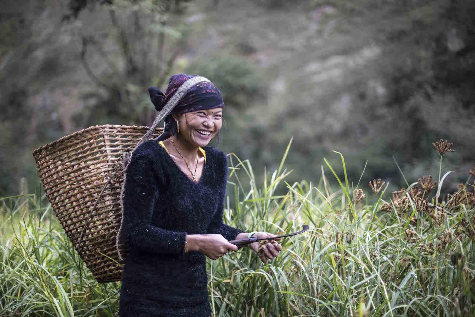 tirage photo recolte chez les tsumbas du nepal